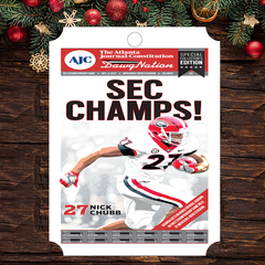 Ornament: SEC Champions Field Edition